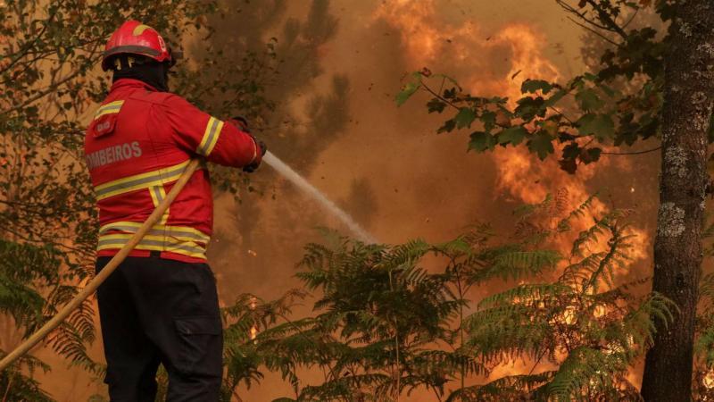 Mais de 400 bombeiros apoiados por três meios aéreos combatem incêndio em Oliveira de Azeméis