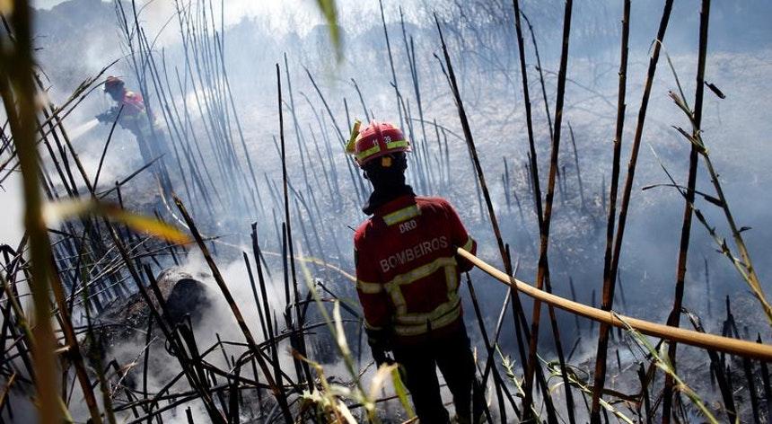 Incêndios: Governo declara situação de alerta entre quarta-feira e domingo