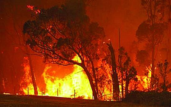 Nacional | Risco de incêndio vai manter-se elevado nos próximos dias