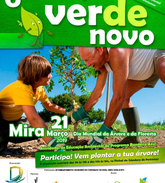 6ª edição do Vale a Pena Verde Novo em Mira