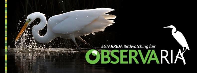 ObservaRia sensibiliza para a proteção da natureza