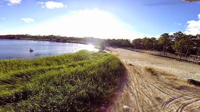 Pedrógão | Estação da Biodiversidade divulga riqueza biológica da praia do Pedrógão
