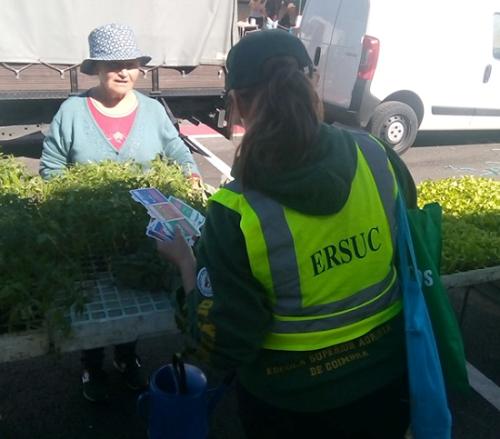 Sociedade | Ação de sensibilização no Mercado Vilarinho do Bairro