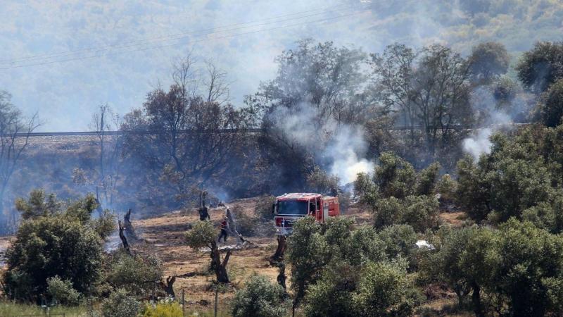 Governo prolonga proibição de queimadas até quinta-feira em 10 distritos