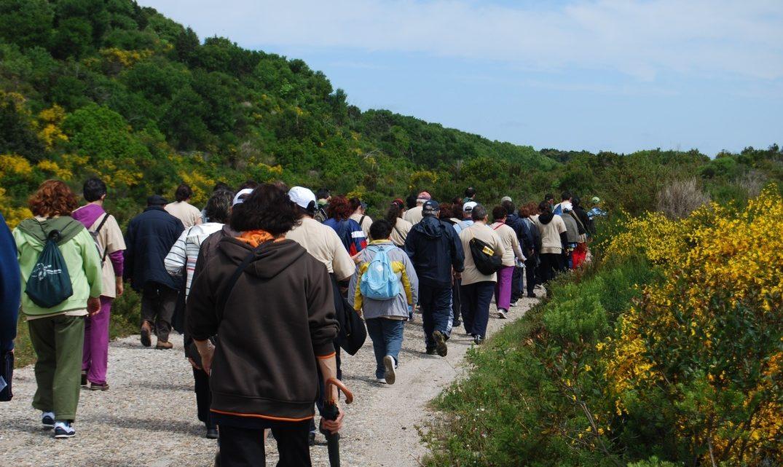 Marinha Grande | Passeio pedestre com circuito urbano no próximo domingo