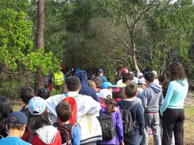 Marinha Grande | 1500 alunos participaram nos passeios pedestres