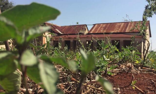 Moçambique | Namaacha: Cidadã é assassinada e enterrada na machamba