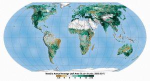 Mundo | A Terra está cada vez mais verde