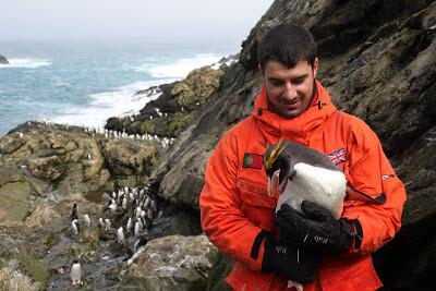 Coimbra | Elite mundial da ciência polar reúne-se em Coimbra para debater o efeito das alterações climáticas na vida da Antártida