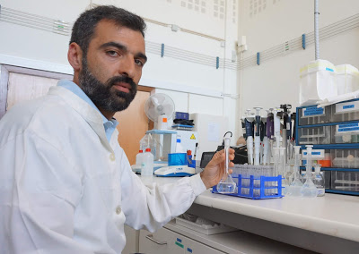 Coimbra | Alterações climáticas: cientistas estudam soluções para impedir o desaparecimento dos sapais estuarinos
