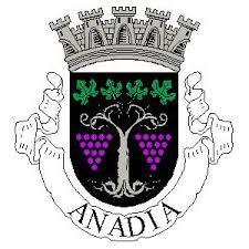 Região Centro  Rede Social de Anadia esteve reunida em Plenário