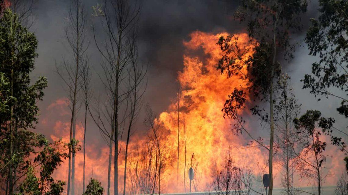 Situação de alerta: Proibição de queimadas e uso de fogo-de-artifício