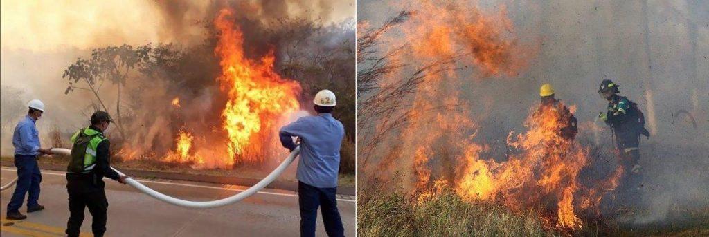 Mundo | Mitos e mentiras de elites globais sobre os incêndios na Amazônia queimam intensamente