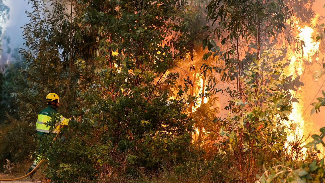 GNR deteve duas pessoas pelo crime de incêndio florestal