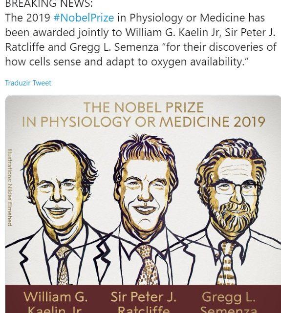 Nobel da Medicina: Três cientistas distinguidos por investigação sobre a forma como as células se adaptam à disponibilidade de oxigénio