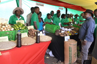 "Mundo | Presidente Nyusi clama que agricultura salvou Moçambique ""da crise que intensamente vivia"", banqueiros discordam"