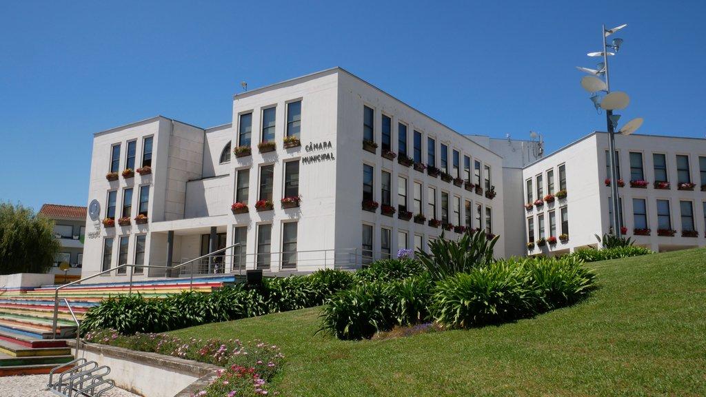 Ação Social | Município de Águeda elabora Estratégia Local de Habitação