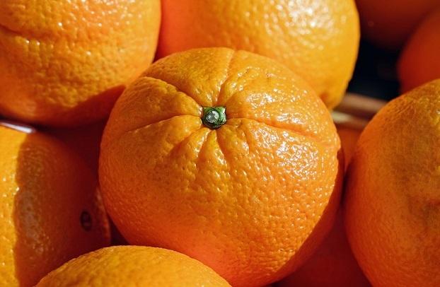 Algarve | Programa de promoção dos citrinos do Algarve nos mercados externos vai ser apresentado