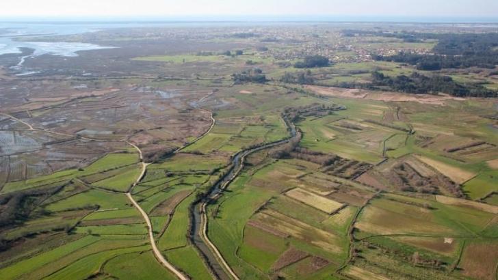 Ponte-açude e Defesa do Baixo Vouga Lagunar são prioridades da CIRA para 2020