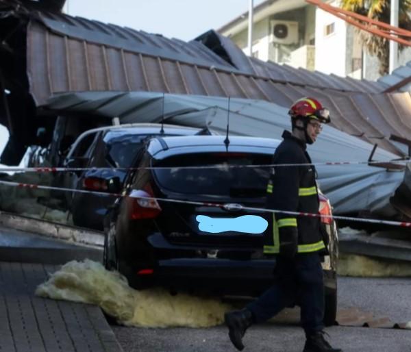 Mau tempo provoca 150 quedas de árvores no distrito de Coimbra
