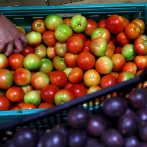 Fruta Feia já salvou do lixo duas mil toneladas de maçãs, peras e legumes