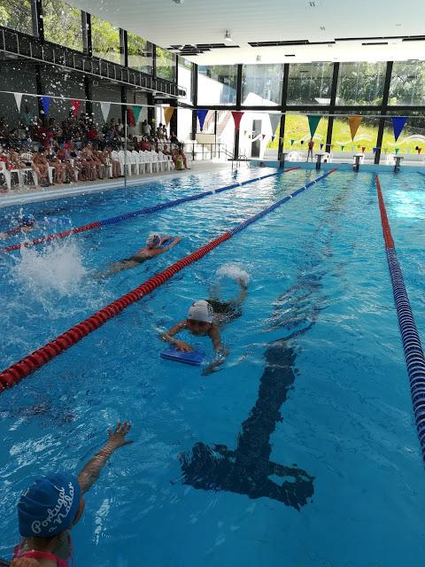 Ansião recebeu estágio de nadadores