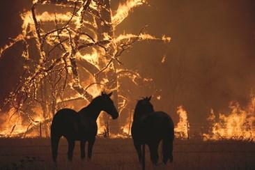 Incêndios com várias frentes mantêm Austrália em estado de alerta