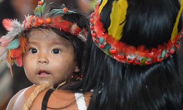 """Padres casados e diaconisas não cabem no """"sonho eclesial"""" do Papa para a Amazónia"""
