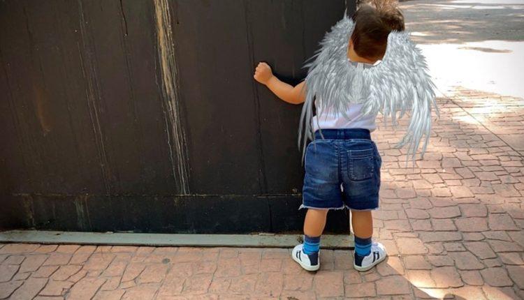 México | Anuncian El Lanzamiento De Novedosa Línea De Camisetas Aladas Con Realidad Aumentada: WingShirts, ¡Libera Tu Espíritu Volador!