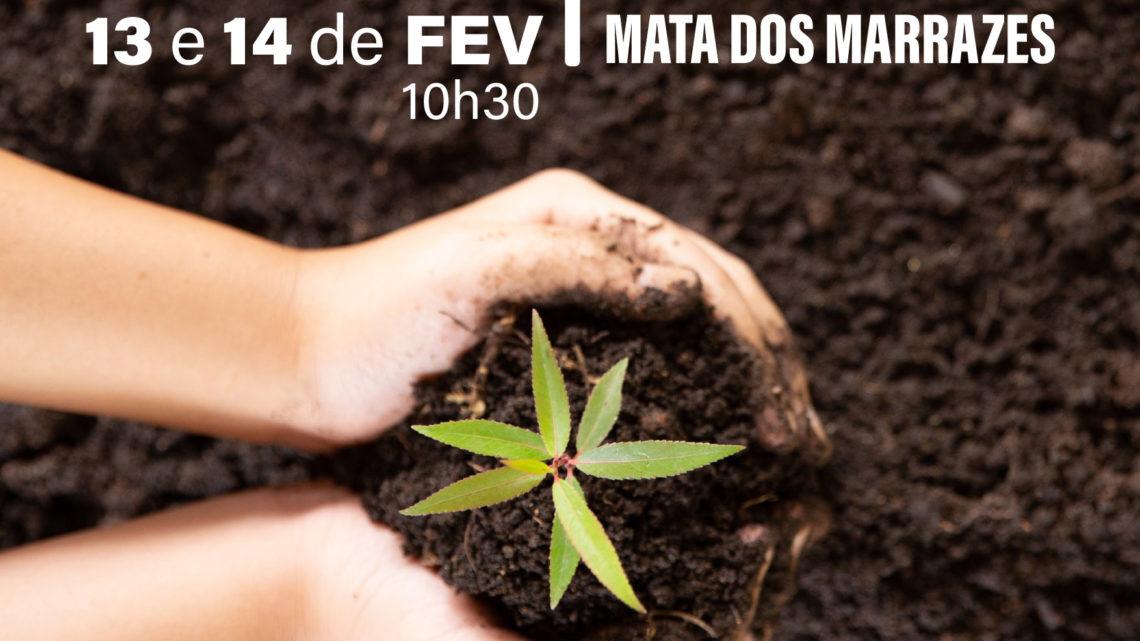 """""""Viver Melhor"""" promove plantação de árvores na Mata dos Marrazes"""