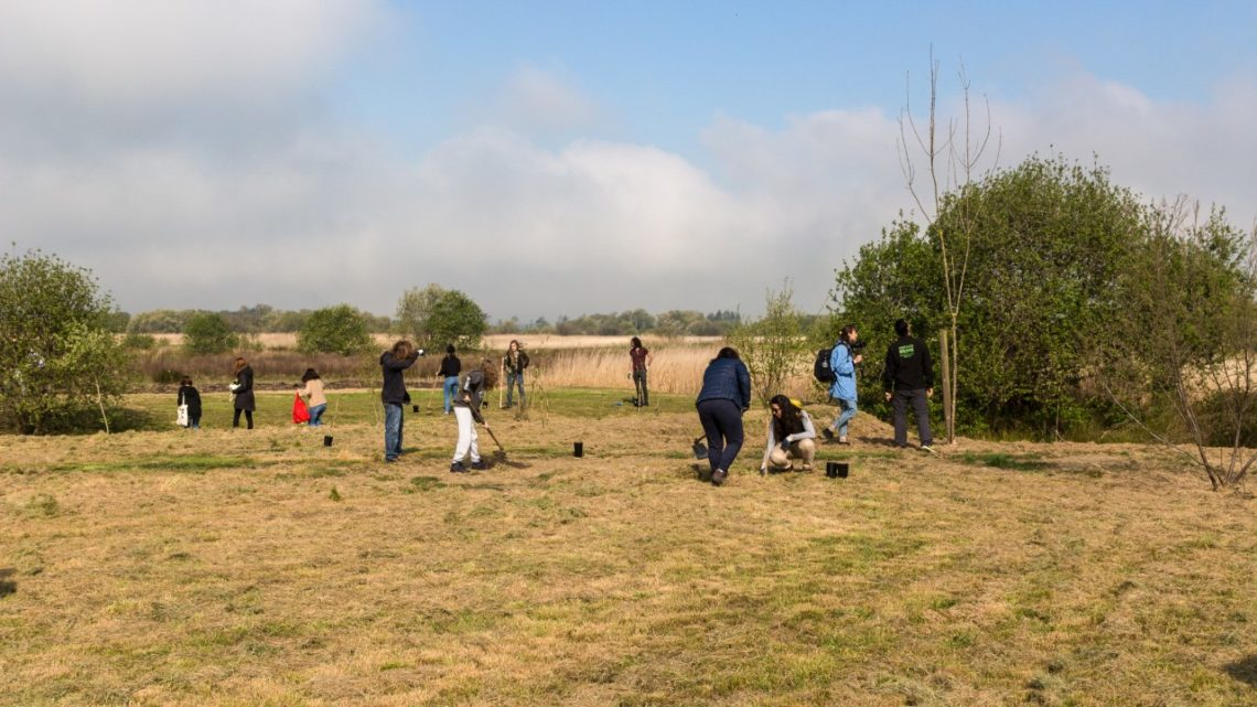 Região de Aveiro | Um dia para plantar 1000 Árvores no BioRia
