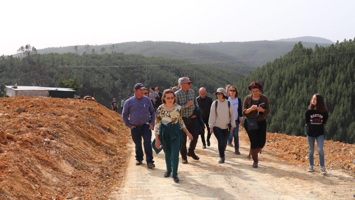Proença-a-Nova   Plantações na aldeia da Mó afirmam processo de reconversão de áreas florestais em agrícolas