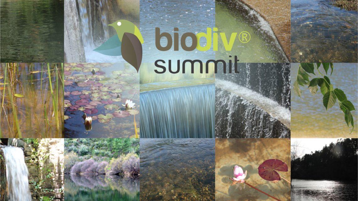 Proença-a-Nova | II BiodivSummit destaca a importância da água num debate online