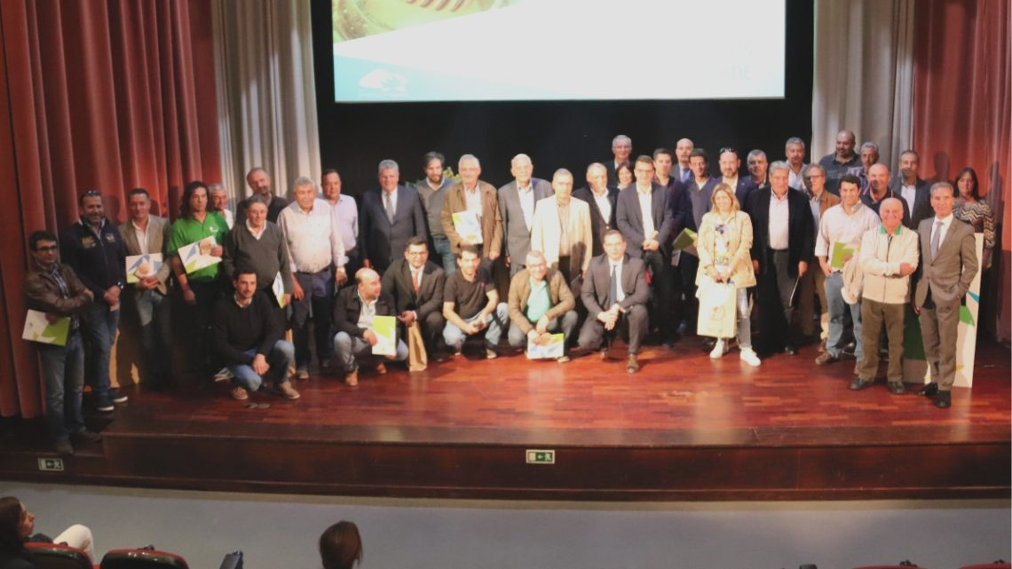 Sete empresas do concelho distinguidas como PME Líder e PME Excelência