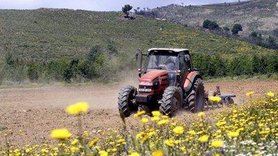 Covid-19: Governo antecipa pagamento de fundos comunitários aos agricultores
