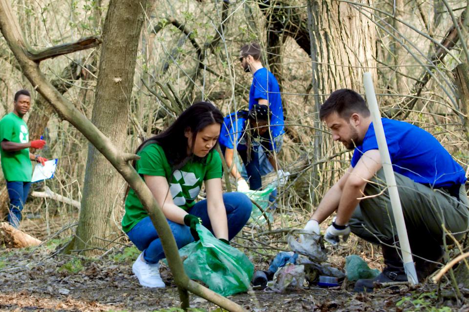 """""""Voluntariado Jovem para a Natureza e Florestas"""" abertas as inscrições para jovens voluntários/as"""
