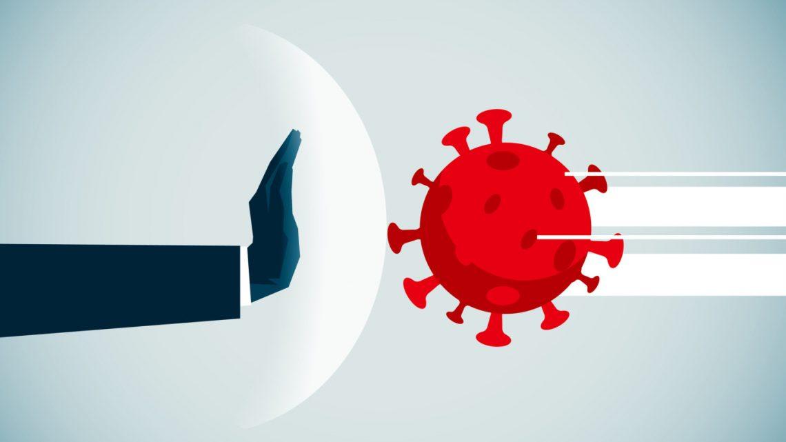 Avanço: anticorpo que bloqueia 100% da infecção viral por coronavírus é encontrado em experimentos de laboratório