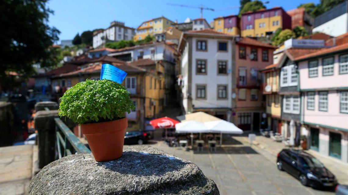 Cerco do Porto ou gripe espanhola não travaram o São João. A Covid-19 sim