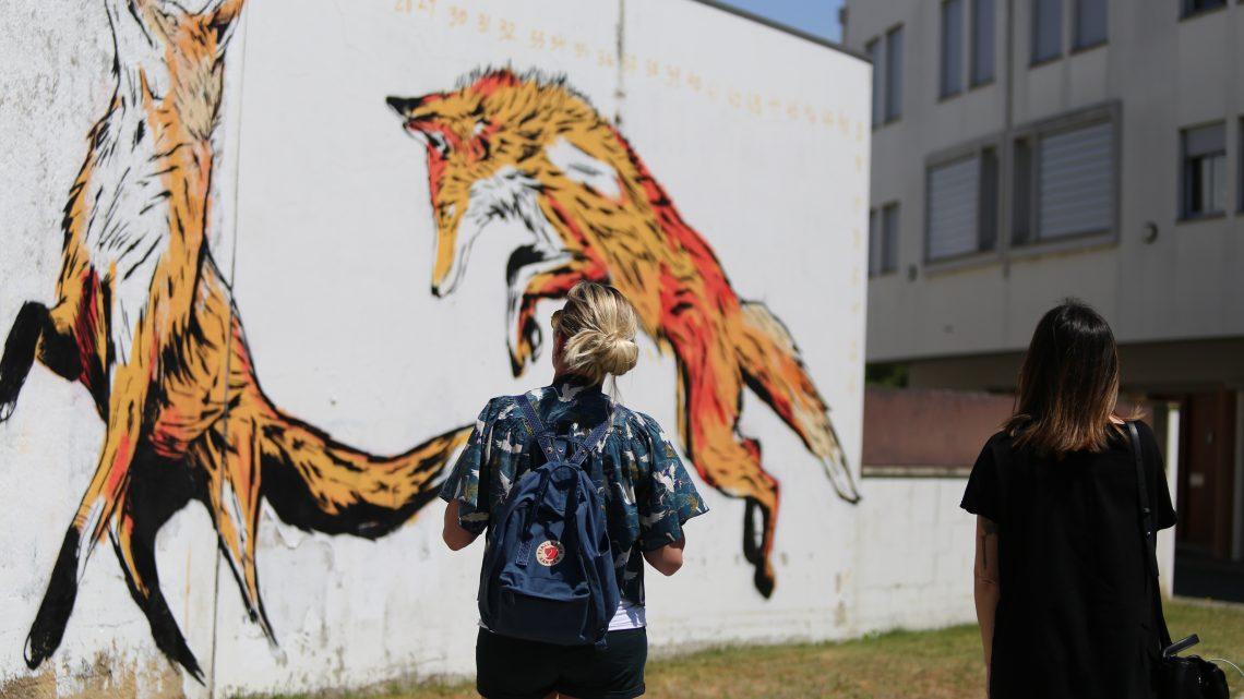 ESTAU 2020: A arte nas ruas à sua espera a partir de amanhã
