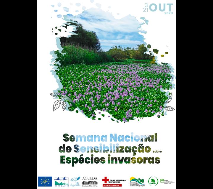 Câmara de Águeda dinamiza Semana Nacional de Sensibilização sobre espécies invasoras