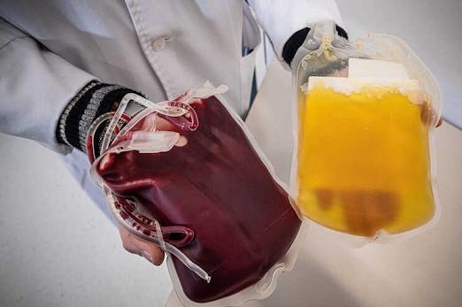 Saúde Poucas dádivas de sangue e aumento da necessidade geram apelo aos dadores