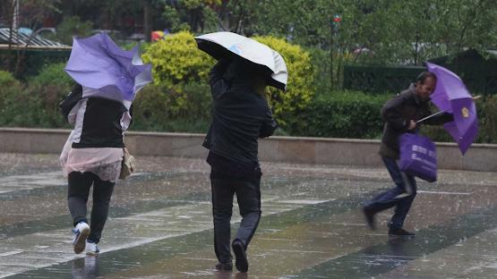 Semana de tempestade. Há 13 distritos sob aviso laranja devido à chuva forte