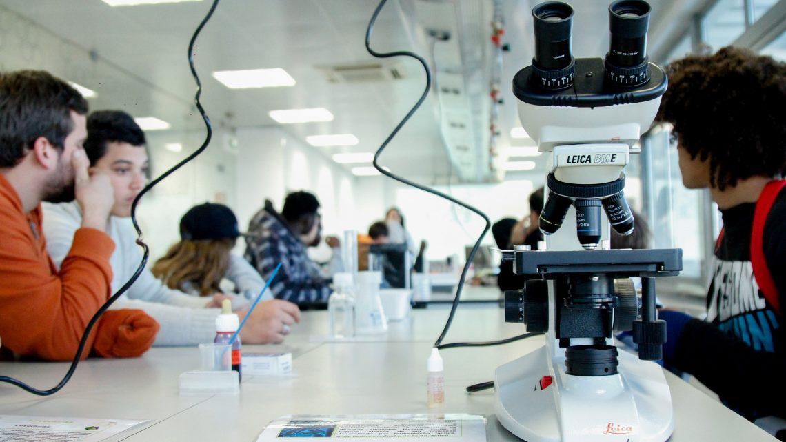 Cantanhede | Projeto pedagógico direcionado para crianças e jovens: Biocant promove Academia de Biotecnologia