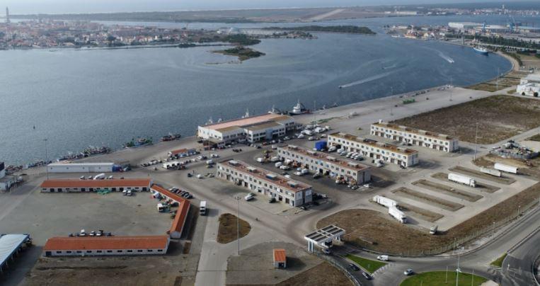 GNR de Aveiro apreendeu e doou 391 kgs de atum-rabilho