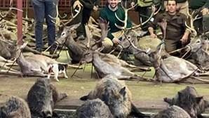 Suspensa licença de caça na quinta da Torre Bela após abate de 540 animais