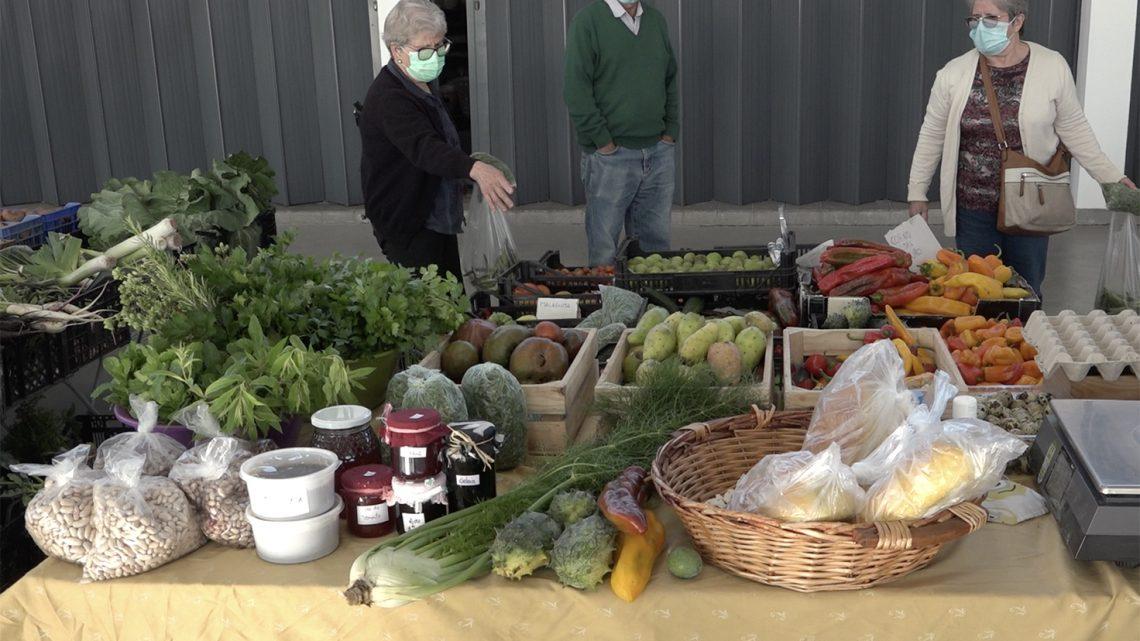 Mercado Municipal de Cantanhede aproxima consumidores dos produtores locais