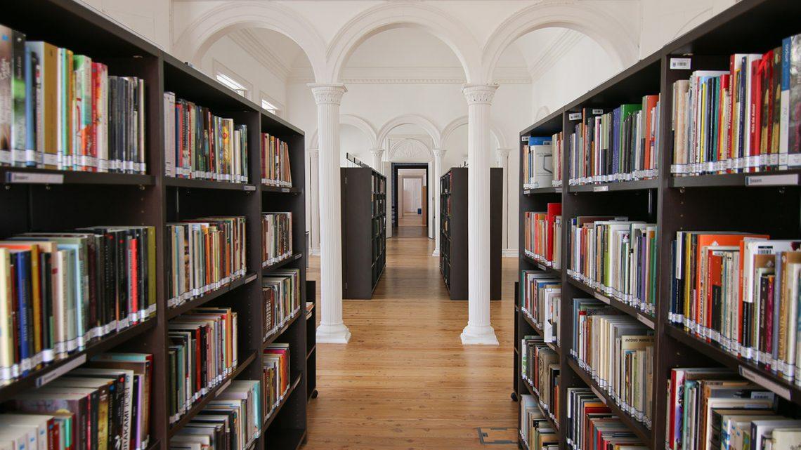 """Biblioteca Municipal de Reguengos de Monsaraz volta a disponibilizar """"Take away literário"""""""