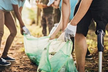 Voluntariado Jovem para a Natureza e Florestas