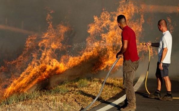 Fogo do Algarve obrigou a retirar de casa 81 pessoas e a evacuar canil