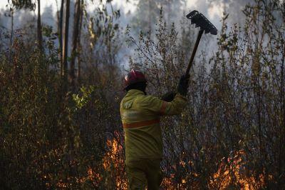 Nove concelhos dos distritos de Faro e Santarém com risco muito elevado de incêndio. O tempo para hoje